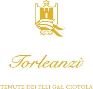 logo-torleanzi-piramid