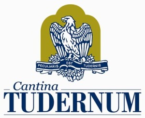 logo-tudernum