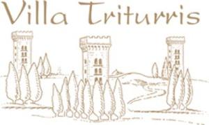 luiz-barichello-logo